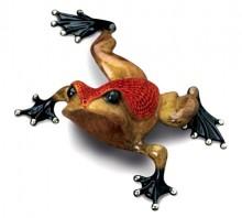frogman dimples