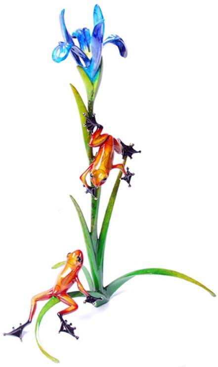 frogman iris