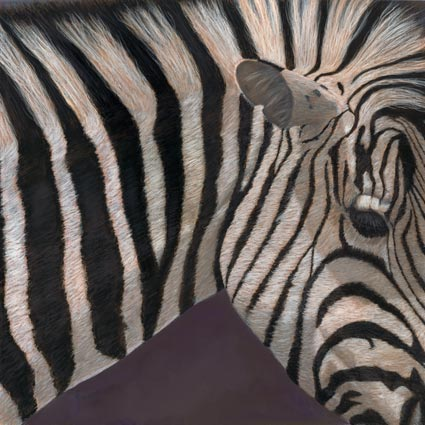 lynn freed stripes ii