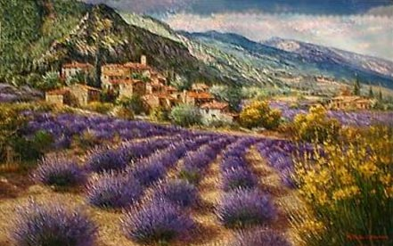 sam park lavender fields