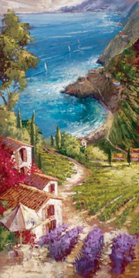 steve quartly amalfi vineyard