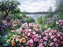 susan rios harbor roses