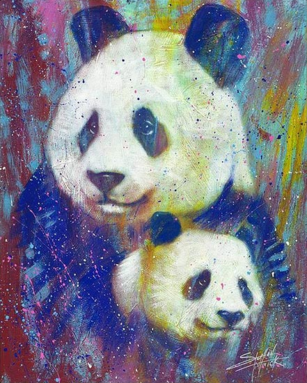 stephen fishwick close in color panda