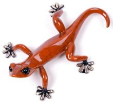 frogman chico