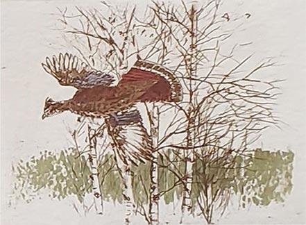 victor hohne wild turkey