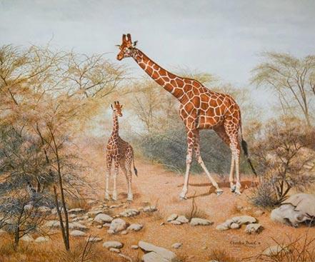 charles frace quiet time in samburu